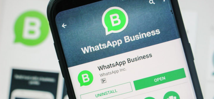WhatsApp for business te cobrará por el uso solo si…